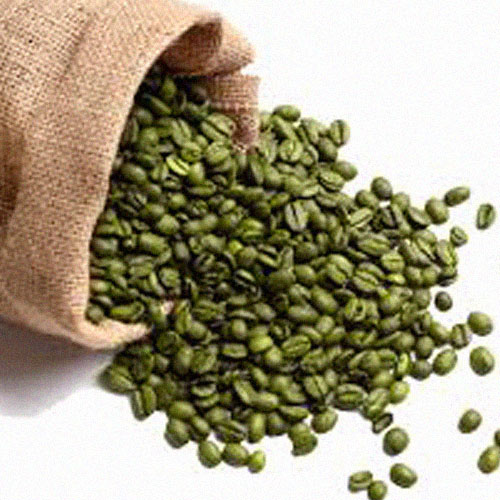 Green Coffee Beans pouring out of Canvas Sack